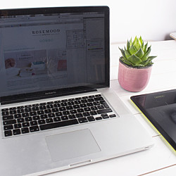 Internship – Marketing Project Management