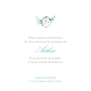 Faire-part de naissance Hibou aquarelle turquoise