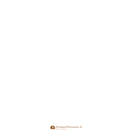 Faire-part de naissance Hiver 4p blanc