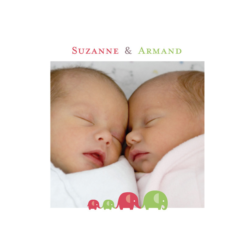 Faire-part de naissance Jumeaux mixte - Atelier Rosemood