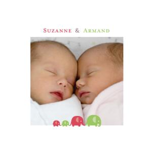 Faire-part de naissance Jumeaux mixte vert-rose