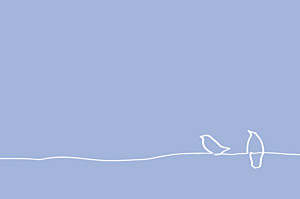 Carton d'invitation mariage Oiseaux bleu