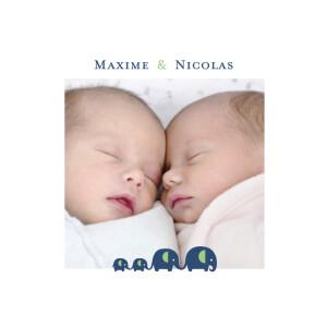 Faire-part de naissance Jumeaux garçons vert