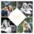 Faire-part de mariage 4 photos losange beige - Page 1