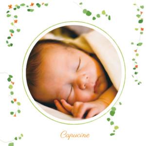 Faire-part de naissance Capucine orange