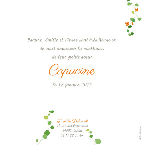 Faire-part de naissance Capucine orange