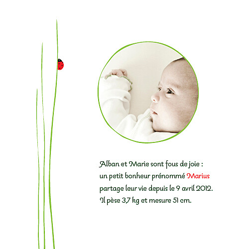 Faire-part de naissance Coccinelle photo rouge - Page 1