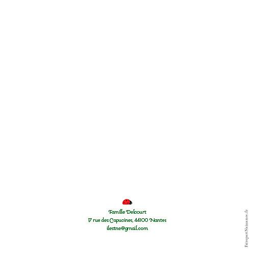 Faire-part de naissance Coccinelle photo rouge - Page 2