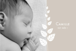 Faire-part de naissance Elégance 5 photos taupe