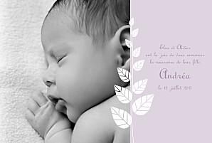Faire-part de naissance violet elégance recto verso parme