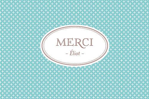 Carte de remerciement Merci motif chic écusson paysage turquoise