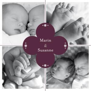 Faire-part de naissance Trèfle jumeaux aubergine
