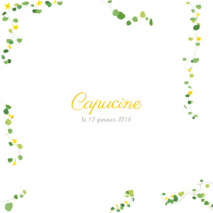 Faire-part de naissance Capucine photo jaune