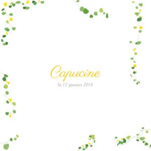Faire-part de naissance Capucine photo jaune