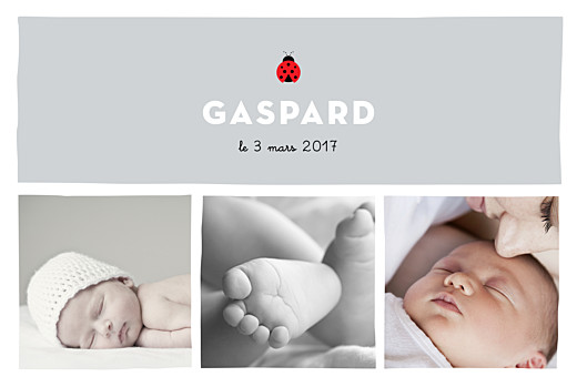 Faire-part de naissance Coccinelle paysage 5 photos gris