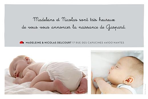 Faire-part de naissance Coccinelle paysage 5 photos gris - Page 2