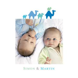 Faire-part de naissance Jumeaux fratrie dromadaires bleu vert