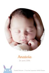 Faire-part de naissance Lapin photo bleu