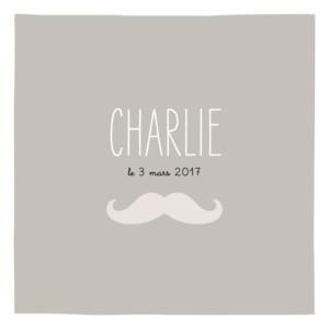 Faire-part de naissance Moustache 1 photo taupe