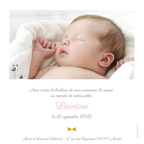Faire-part de naissance Là-haut photo rv rose - Page 2