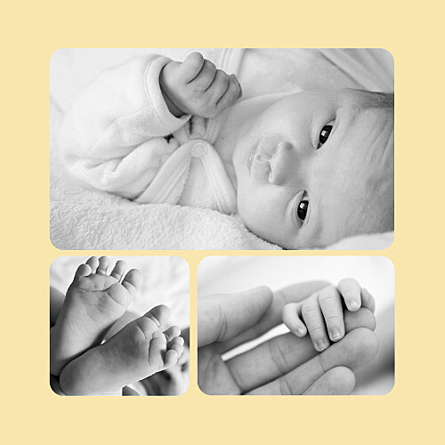 Faire-part de naissance Chaton 3 photos jaune