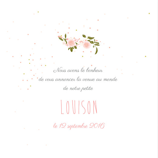 Faire-part de naissance Bucolique photo (4 pages) gris rose