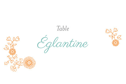 Marque-table mariage Champêtre multicolore