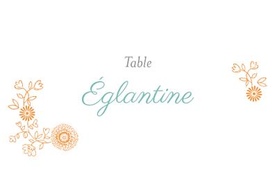 Marque-table mariage Champêtre multicolore finition