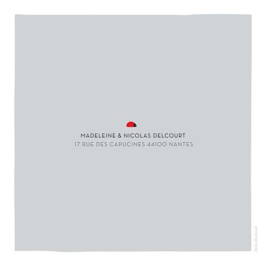 Faire-part de naissance Coccinelle (4 pages) gris