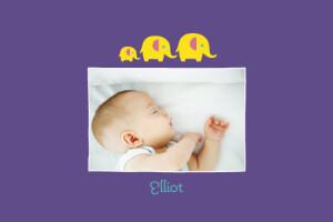 Carte de remerciement Patrouille 3 éléphants jaune violet