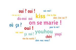 Carton d'invitation mariage Dis moi oui ! rose & bleu