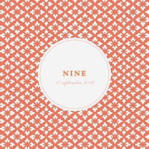 Faire-part de naissance orange on dirait le sud... (4 pages) corail