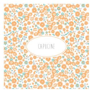 Faire-part de naissance Gaieté orange