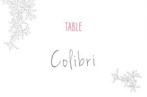 Marque-table mariage Cage à oiseaux rouge