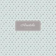 Faire-part de naissance Nuit étoilée (triptyque) jade page 1
