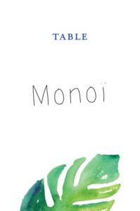 Marque-table mariage Acapulco blanc & vert