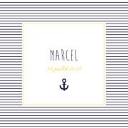 Faire-part de naissance Petit matelot (triptyque) bleu & jaune page 1