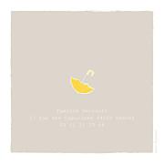 Faire-part de naissance Balade (triptyque) beige jaune page 3