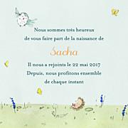 Faire-part de naissance Nous irons au bois (triptyque) bleu ciel page 3