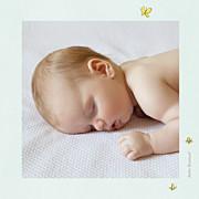 Faire-part de naissance Nous irons au bois (triptyque) bleu ciel page 6