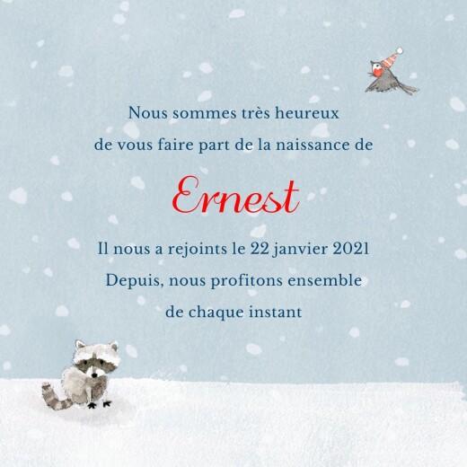 Faire-part de naissance Conte d'hiver (triptyque) bleu - Page 3