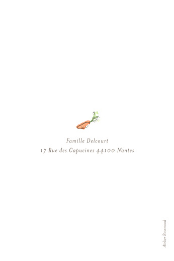 Faire-part de naissance Petit lapin champêtre garçon - Page 4