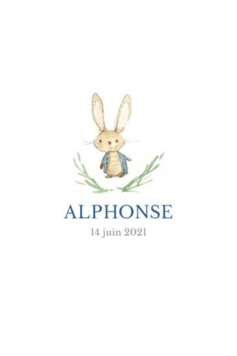 Faire-part de naissance Petit lapin portrait bleu