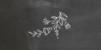 Marque-place Baptême Ardoise fleurs noir - Page 2
