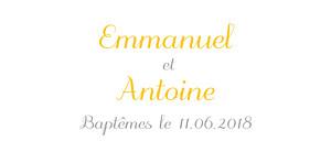 Etiquette de baptême beige balade jumeaux jaune