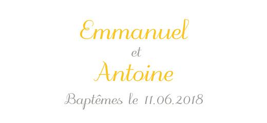 Etiquette perforée baptême Balade jumeaux jaune
