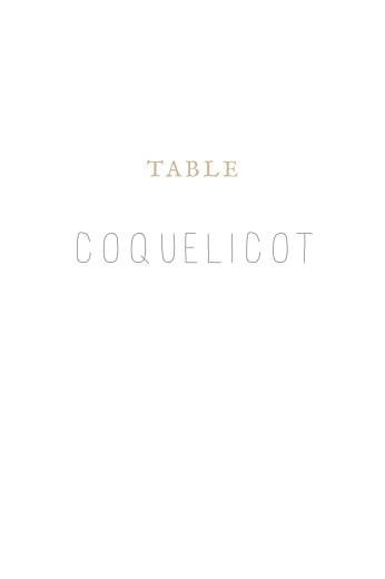Marque-table mariage Gypsophile kraft