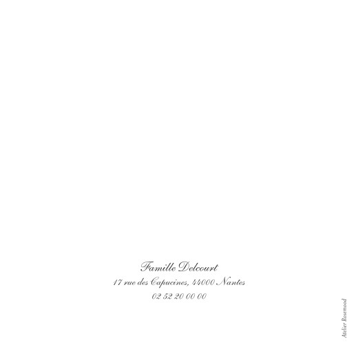 Faire-part de naissance Carrousel 2 photos blanc - Page 4