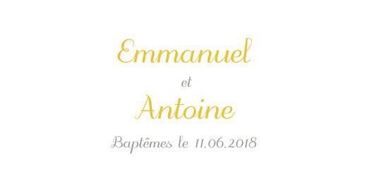 Marque-place Baptême Balade jumeaux jaune - Page 4
