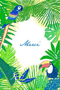 Carte de remerciement vert merci jungle photo vert